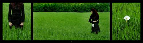 Green_Fields_by_pirifool